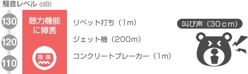 110~130デシベル 聴力機能に障害 リベット打ち(1m) ジェット機(200m) コンクリートブレーカー(1m) 叫び声(30cm)